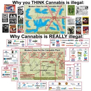 Cannabis and capitalism