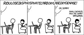 Chemist safewords