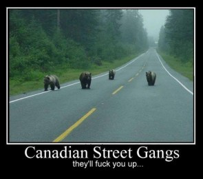 Canadian Gangs