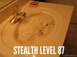 Steath Lvl 87
