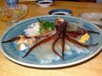 squid dinner