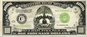 1000 raccoon dollars