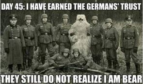 bear infiltrates the nazis