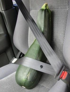 Vegetable Seat