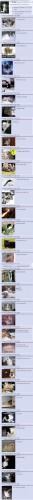 Metallica + lolcats + 4chan