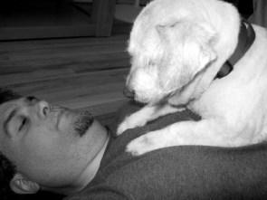 My Pet Dog – Bogart