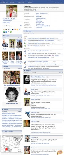 Sarah Palin's Facebook Page