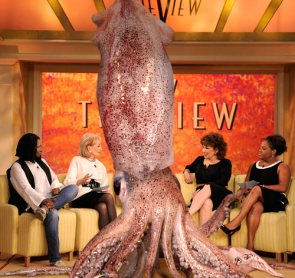 "909lb Squid  joins ""The View"""