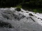 Meremac Springs – Columbia MO
