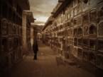 almudena's cemetery