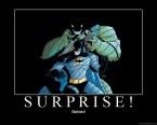 Surprise! Batsex!