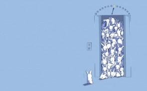 Bunnies in an elevator