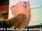Kitty says…it's time to stop posting