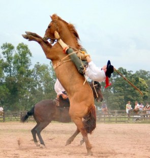 Horse Ejection