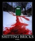 Sh!t Bricks