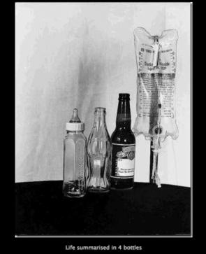 Life in 4 bottles