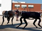 Big Dog Military Robots
