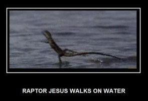 Raptor Jesus walks on water
