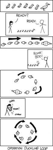 Operation: Duckling Loop