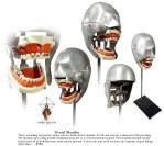 dentalbot3.jpg