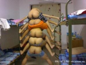 NSFW – ass centipede