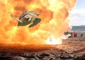 Action Hero Turtle