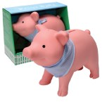 RPB – Rubber Piggy Bank