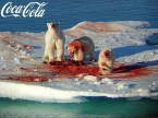 Red Polar Bears