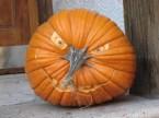 Sinister Pumpkin