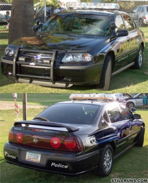 More Police Cars