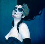 Blue Rose by Sylvia Ji
