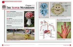Science of the Mushroom Kingdom
