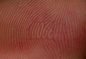 finger print – judge