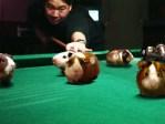 hamster pool.jpg