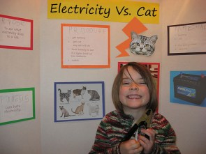 Electricity vs. Cat