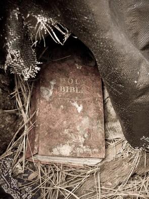 Semi-Moldy Bible