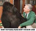 Mr. Rogers & A Gorilla