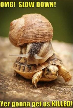 Slowdown!