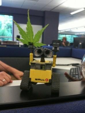 Wall-e found life