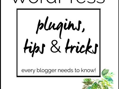 wordpress plugin ebook