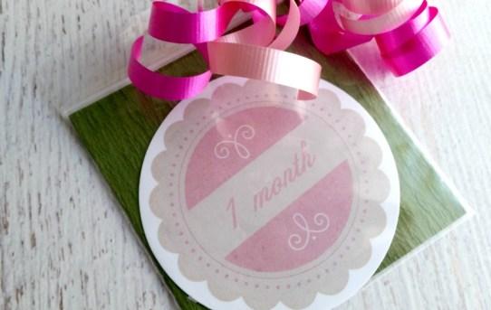 baby sticker packaging