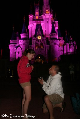 My Dreams of Disney, Disney In Pictures, Cinderella Castle