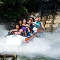 100 Days til Disneyland - Matterhorn Bobsleds!