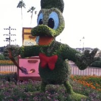 Celebrating Mother's Day at Walt Disney World