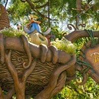 44 Days til Disneyland - Pixie Hollow!