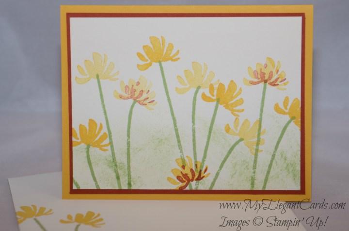yellow-orange too kind flowers