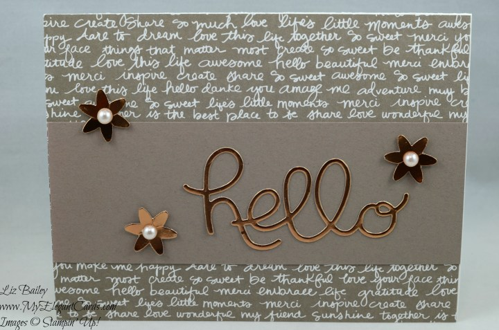 Liz Bailey Stampin' Up! Demonstrator - In-Color Designer Series Paper Stack - Blossom Bunch Punch - Hello You thinlits dies