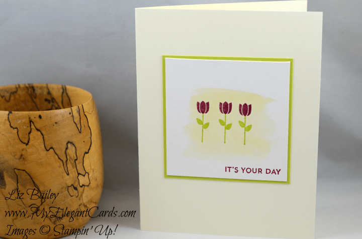 Liz Bailey Stampin' Up! Demonstrator - Paper Pumpkin July 2017 Alternate - Positively Picturesque