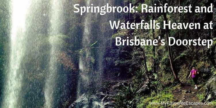 Springbrook Rainforest Waterfalls Brisbane