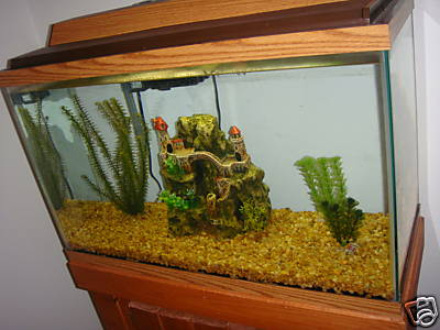 30 Gallon Aquarium Fish Tank All Accessories Included